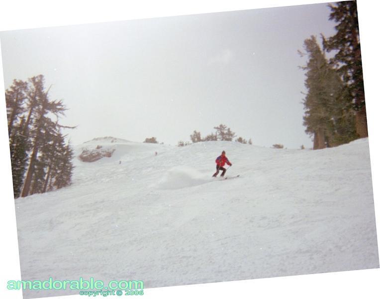 Kirkwood Skier