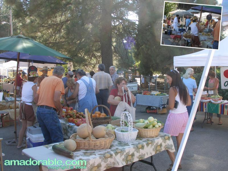 Scenes from a recent Pine Grove Farmers' Market